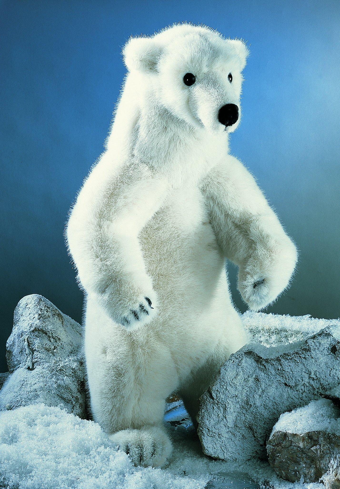K 246 Sen Usa 3240 Nanook Polar Bear