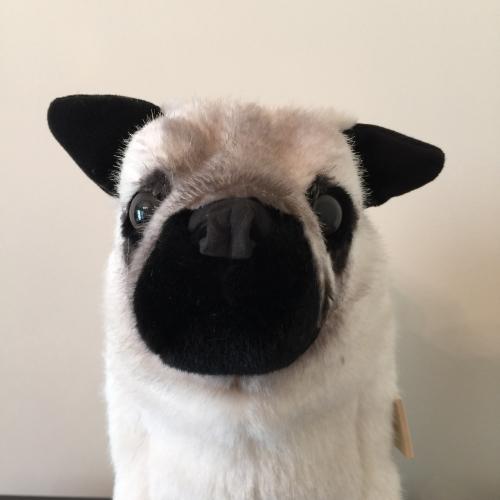 Kosen Plush Pug Dog Handmade in Germany Stuffed Animal