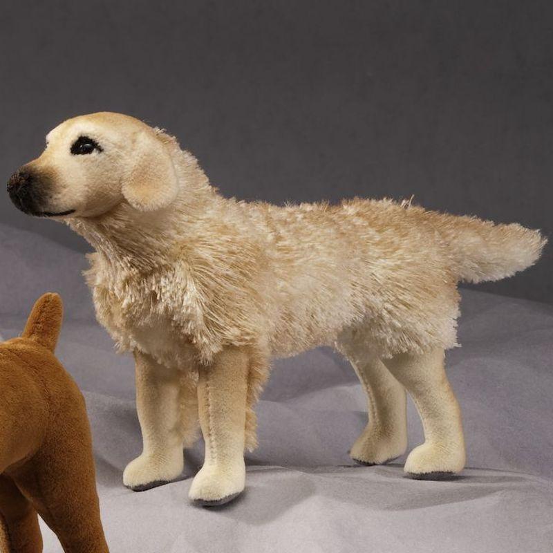 6000 Hayley Mini Golden Retriever Dog