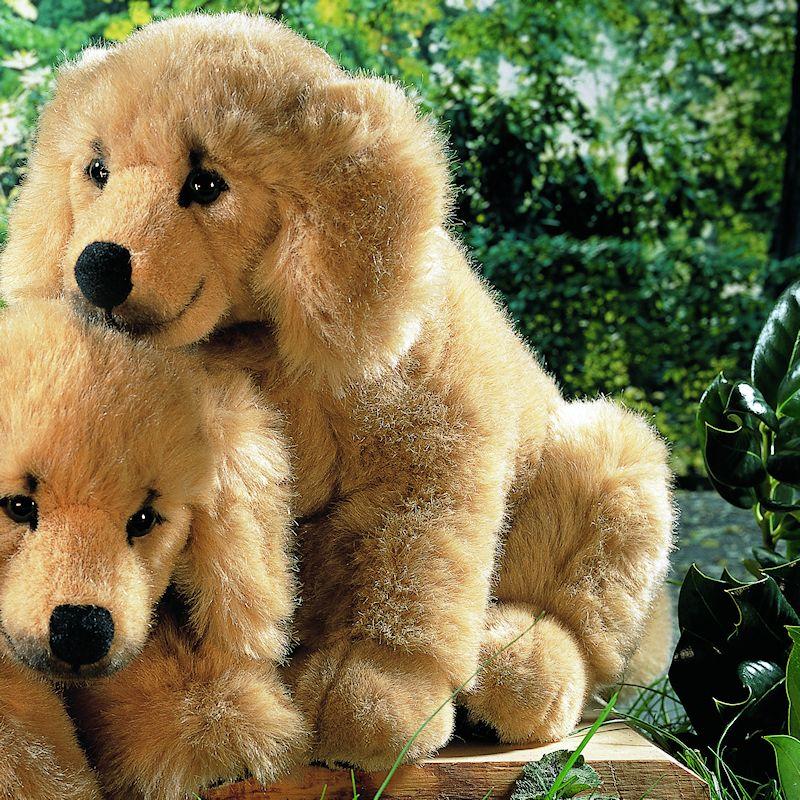 5200 Golden Retriever Puppy Sitting