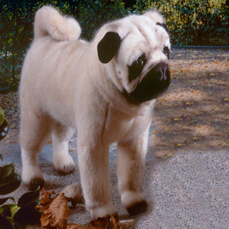 Realistic Pug Stuffed Animal, Realistic Pug Stuffed Animal Shop Clothing Shoes Online