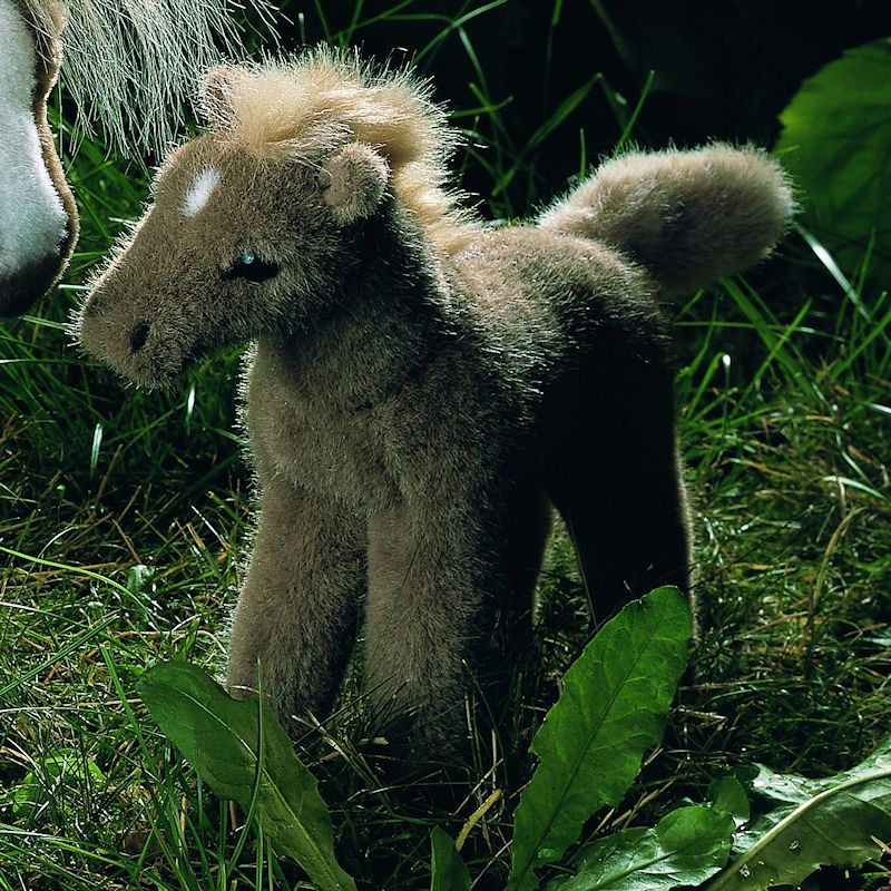 "fdff8220b9011 Kösen-USA - 3351 ""Bella"" Austrian Haflinger Foal"