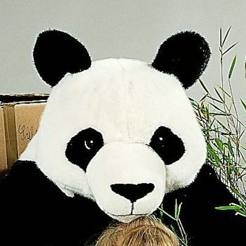Kosen Usa 4360 Foo Panda Studio
