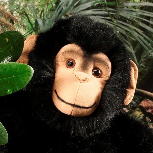 Monkeys K 246 Sen Usa