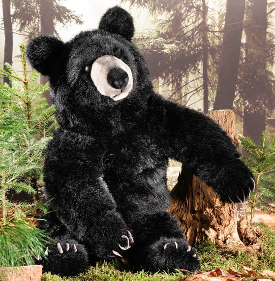 Kosen Usa 6684 Schroeder Black Bear 2017 Collection